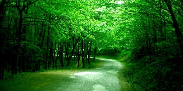 belgrad ormanı giriş ücreti