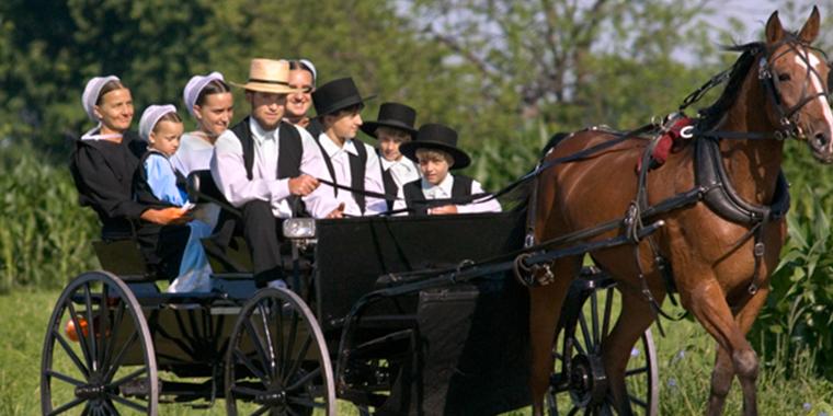 amişlerin ilginç yaşamı  Teknolojiyi Reddeden Topluluk Amişlerin İlginç Yaşam Tarzı amis aile