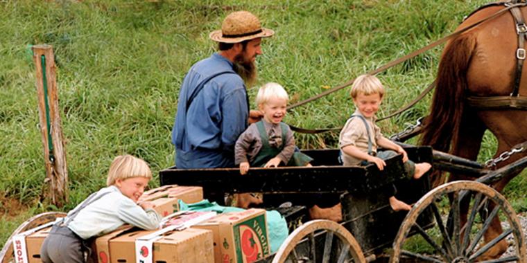 amişlerin aile yapısı  Teknolojiyi Reddeden Topluluk Amişlerin İlginç Yaşam Tarzı amis baba