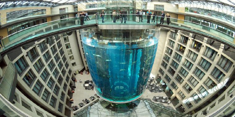 The AquaDom