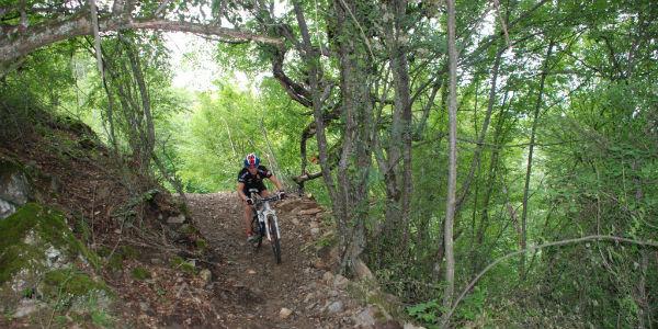 yenice ormanları bisiklet parkuru