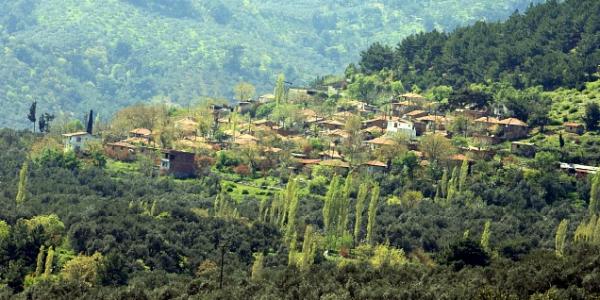 kazdağları beyoba köyü