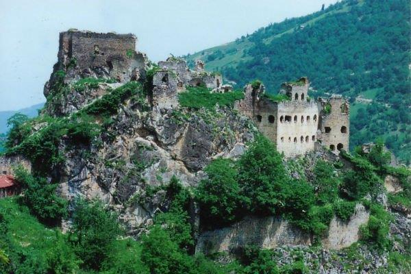 Trabzon simsirli koyu
